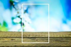 Fondo de la primavera con el marco blanco en los tableros de madera Imágenes de archivo libres de regalías