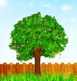 Fondo de la primavera con la hierba verde, el árbol floreciente y el jardín f Imagen de archivo