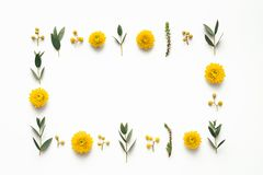 Fondo de la primavera con las flores amarillas imagen de archivo
