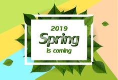 Fondo de la primavera con las hojas verdes y el marco cuadrado ilustración del vector
