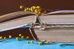 Fondo de la primavera - los libros gastados viejos con la mimosa florecen Fotografía de archivo libre de regalías