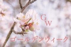 Fondo de la primavera para el celbration de oro de la semana Foto de archivo libre de regalías