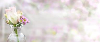 Fondo de la primavera para el día de madres Fotos de archivo libres de regalías