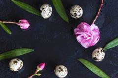 Fondo de la primavera y de Pascua Fotografía de archivo libre de regalías