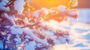 Fondo de la puesta del sol del invierno Foto de archivo