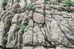 Fondo de la roca Fotografía de archivo libre de regalías