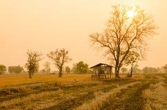 Fondo de la salida del sol Fotografía de archivo