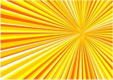 Fondo de la salida del sol del vector Fotografía de archivo libre de regalías