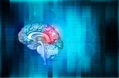 Fondo de la salud del cerebro