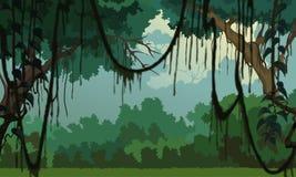 Fondo de la selva - paisaje agradable Foto de archivo