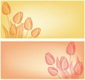 Fondo de la tarjeta de los tulipanes Imagen de archivo