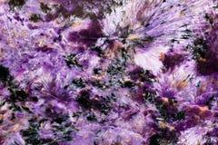 Fondo de la textura de Charoite Foto de archivo
