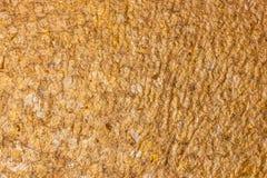 Fondo de la textura de la hoja de oro. imagenes de archivo