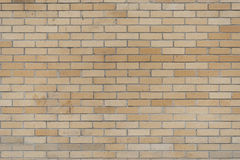 Fondo de la textura de la pared de ladrillo Fotos de archivo