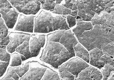 Fondo de la textura del invierno de la nieve del hielo Fotografía de archivo