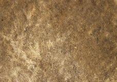 Fondo de la textura del parche de tambor imagen de archivo libre de regalías