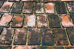 Fondo de la textura del pavimento de la piedra del adoquín del Grunge Fotos de archivo libres de regalías