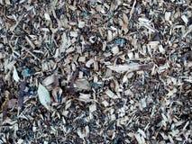 Fondo de la textura del pedazo de madera Foto de archivo libre de regalías