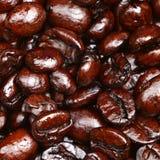 Fondo de la textura del primer de los granos de café Foto de archivo libre de regalías