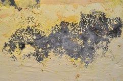 Fondo de la textura del vintage de la pared Imagen de archivo libre de regalías