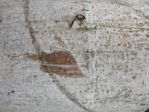 Fondo de la textura de la pared foto de archivo libre de regalías