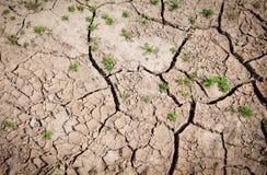 Fondo de la tierra agrietada en tiempo seco Fotografía de archivo libre de regalías