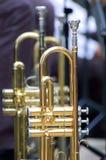 Fondo de la trompeta Foto de archivo libre de regalías