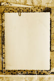 Fondo de la vendimia Imagen de archivo