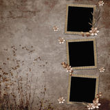 Fondo de la vendimia con los marcos y las flores Fotos de archivo