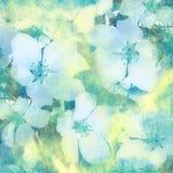 Fondo de la vendimia de la flor Foto de archivo libre de regalías