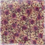 Fondo de la vendimia de las rosas Foto de archivo