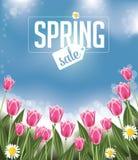 Fondo de la venta de la primavera con los tulipanes y las margaritas ilustración del vector