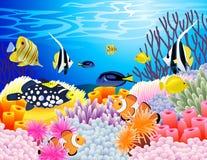 Fondo de la vida de mar Imagen de archivo
