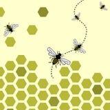 Fondo de las abejas Imagen de archivo libre de regalías