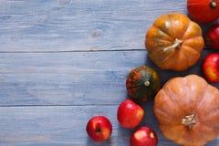 Fondo de las calabazas y de las manzanas de la cosecha del otoño Imagen de archivo libre de regalías