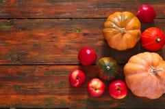Fondo de las calabazas y de las manzanas de la cosecha del otoño Imágenes de archivo libres de regalías