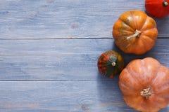 Fondo de las calabazas y de las manzanas de la cosecha del otoño Imagen de archivo