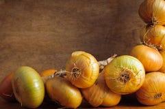 Fondo de las cebollas Fotografía de archivo