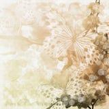 Fondo de las flores de las mariposas y de las orquídeas libre illustration