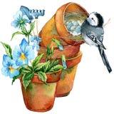 Fondo de las flores del pájaro y del jardín Foto de archivo libre de regalías