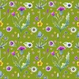 Fondo de las flores salvajes Modelo inconsútil Acuarela del fondo de las flores salvajes imágenes de archivo libres de regalías