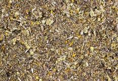 Fondo de las hierbas medicinales secadas orgánicas fotografía de archivo libre de regalías