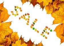 Fondo de las hojas de arce del otoño con la palabra VENTA Fotografía de archivo libre de regalías