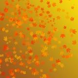 Fondo de las hojas de otoño Fotografía de archivo