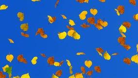Fondo de las hojas de otoño que cae stock de ilustración
