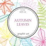 Fondo de las hojas de otoño con el espacio para el texto Fotografía de archivo libre de regalías