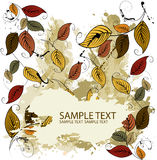 Fondo de las hojas del otoño que cae Imagen de archivo libre de regalías
