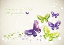 Fondo de las mariposas Fotos de archivo libres de regalías