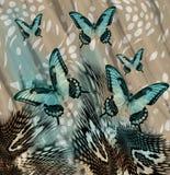 Fondo de las mariposas de la piel de serpiente Imágenes de archivo libres de regalías