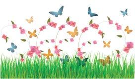 Fondo de las mariposas y de las flores del resorte Fotos de archivo libres de regalías